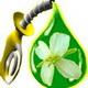 Биотопливо (Biofuels)